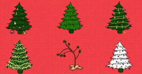 Chọn cây thông Noel đoán tính cách của bạn