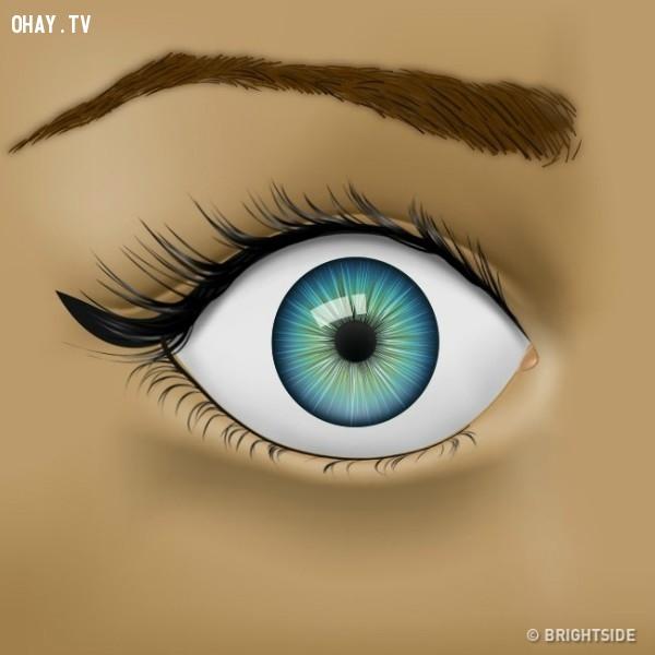 5. Mắt lồi,đôi mắt,bệnh về mắt,sức khỏe