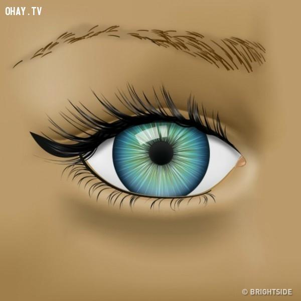 2. Lông mày bị rụng,đôi mắt,bệnh về mắt,sức khỏe