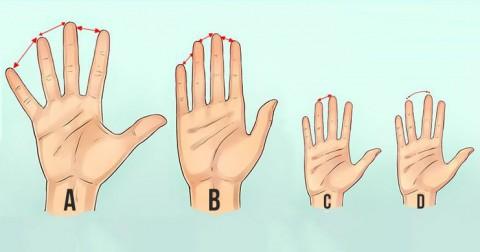 5 bí quyết nhìn bàn tay biết ngay tính cách của người Mỹ