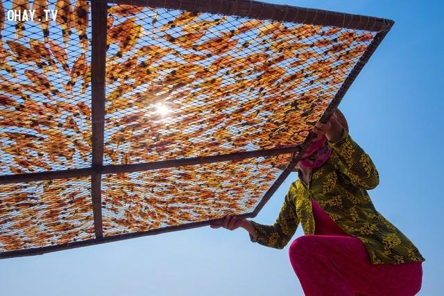 Phơi mực khô tại đảo Nam Du, Kiên Giang,ảnh đẹp,việt nam,nhiếp ảnh