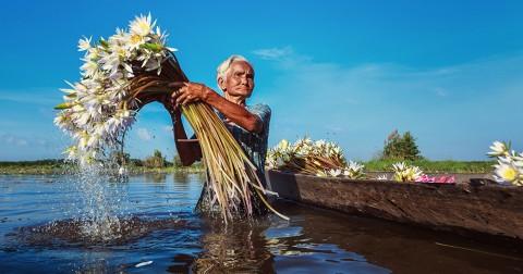 22 hình ảnh tuyệt đẹp về đất nước, con người Việt Nam