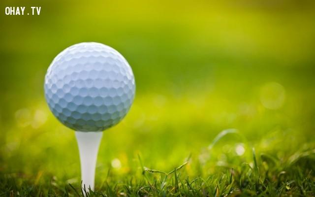Có tất cả 336 chổ lõm trên một quả bóng golf.,thể thao,bóng đá,bóng chuyền