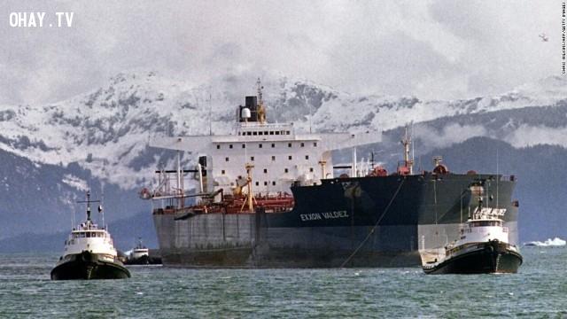 Mỗi năm có khoảng 16 triệu gallon dầu mỏ bị thải ra sông ngòi và lấn vào các biển của nước Mỹ. Nó thậm chí còn nhiều hơn lượng thải ra của tàu chở dầu Exxon Valdez.,khoa học,funfact,những điều thú vị trong cuộc sống
