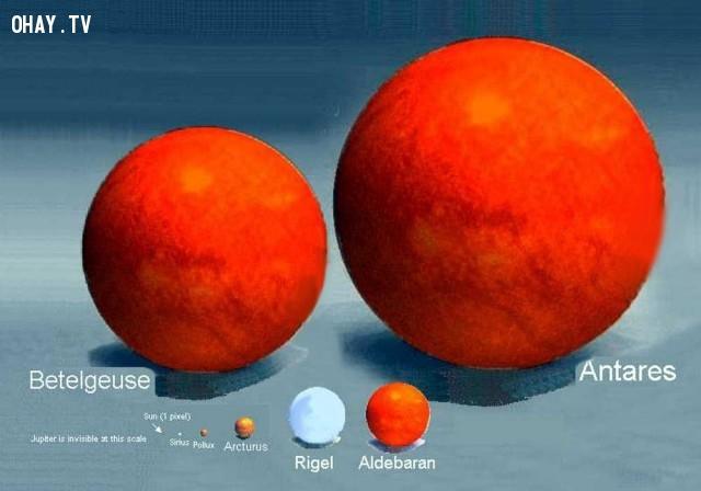 Sao Antares lớn hơn gấp 60000 lần Mặt Trời. Nếu Mặt Trời là một quả bóng chày thì sao Antares sẽ to như một căn nhà.,khoa học,funfact,những điều thú vị trong cuộc sống