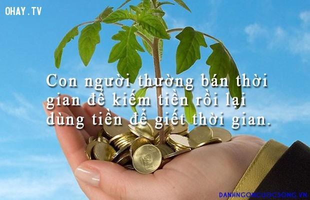 ,tiền,câu nói hay và sâu sắc