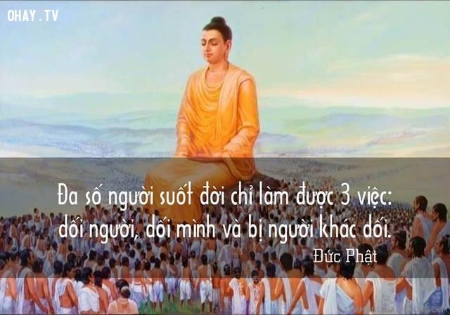 Đa số người suốt đời chỉ làm được 3 việc: dối người, dối mình và bị người khác dối.,triết lý,lời Phật dạy,suy ngẫm,câu nói hay,phật giáo