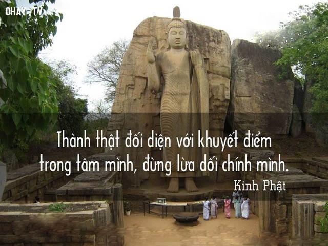 Thành thật đối diện với khuyết điểm trong tâm mình, đừng lừa dối chính mình.,triết lý,lời Phật dạy,suy ngẫm,câu nói hay,phật giáo
