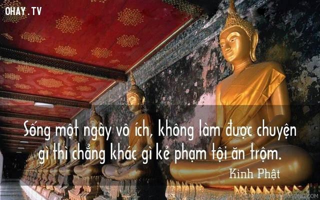 Sống một ngày vô ích, không làm được chuyện gì thì chẳng khác gì kẻ phạm tội ăn trộm.,triết lý,lời Phật dạy,suy ngẫm,câu nói hay,phật giáo