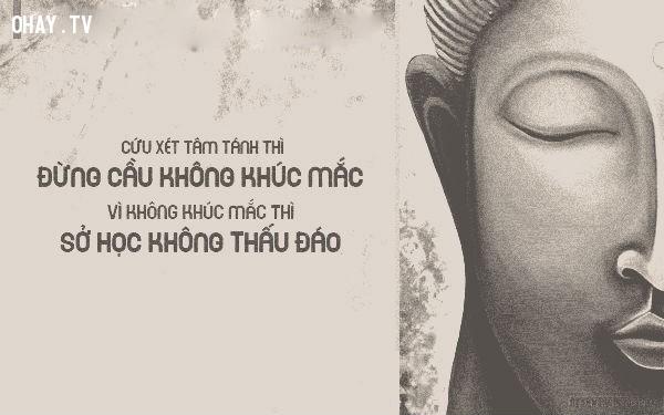 Cứu xét tâm tánh thì đừng cầu không khúc mắc vì không khúc mắc thì sở học không thấu đáo,triết lý,lời Phật dạy,suy ngẫm,câu nói hay,phật giáo