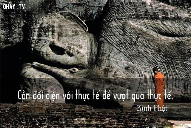 Cần đối diện với thực tế để vượt qua thực tế.,triết lý,lời Phật dạy,suy ngẫm,câu nói hay,phật giáo