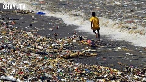 Gwalior, Ấn Độ,thành phố,rác thải,ô nhiễm