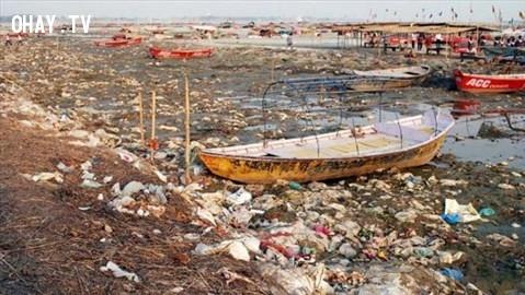 Allahabad, Ấn Độ ,thành phố,rác thải,ô nhiễm
