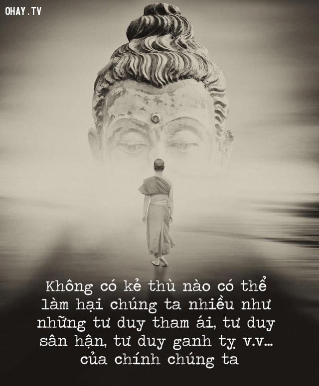 Không có kẻ thù nào có thể làm hại chúng ta nhiều như những tư duy tham ái, tư duy sân hận, tư duy ganh tỵ v.v... của chính chúng ta,triết lý,lời Phật dạy,suy ngẫm,câu nói hay,phật giáo