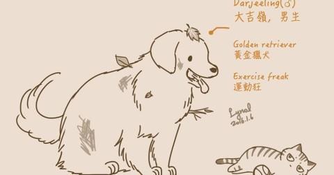 Bài học quý giá rút ra từ câu chuyện giữa mèo và chó qua truyện tranh của Lynol