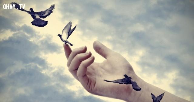 ,tha thứ,suy ngẫm,cách sống