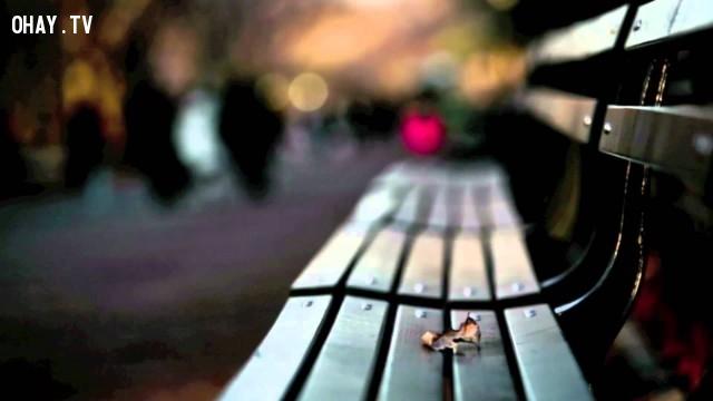 Tại sao lại phải học cách quên?,tha thứ,suy ngẫm,cách sống