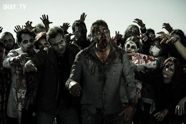Lũ Zombie tồn tại như một bản năng,zoombie,ngày tận thế