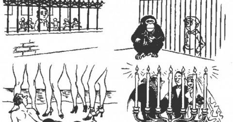 Chùm tranh biếm họa mô tả cuộc sống hiện đại ngày nay