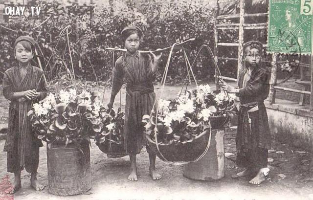 Những cô bé gánh lục bình (bèo Nhật Bản) đi bán cuối thế kỷ 19 ở Hà Nội,Việt nam xưa,Việt Nam thế kỷ 18,Ảnh cổ Việt Nam