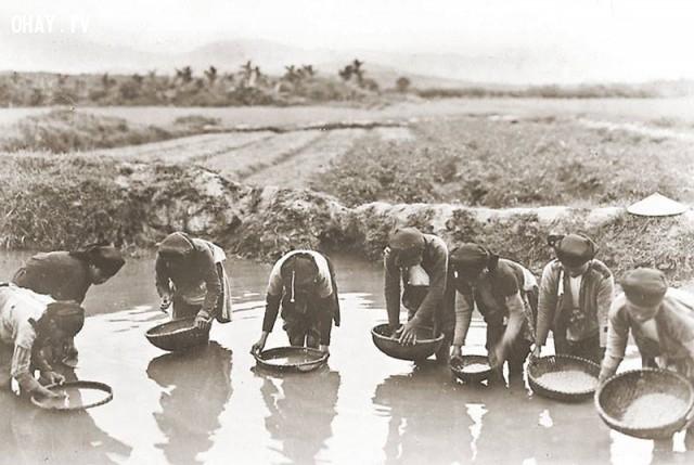 Chị em ta cùng nhau đãi gạo thổi cơm, Bắc bộ cuối thế kỷ 19,Việt nam xưa,Việt Nam thế kỷ 18,Ảnh cổ Việt Nam