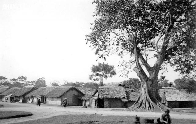 Một ngôi làng ở ngoại ô Hà Nội 1890,Việt nam xưa,Việt Nam thế kỷ 18,Ảnh cổ Việt Nam