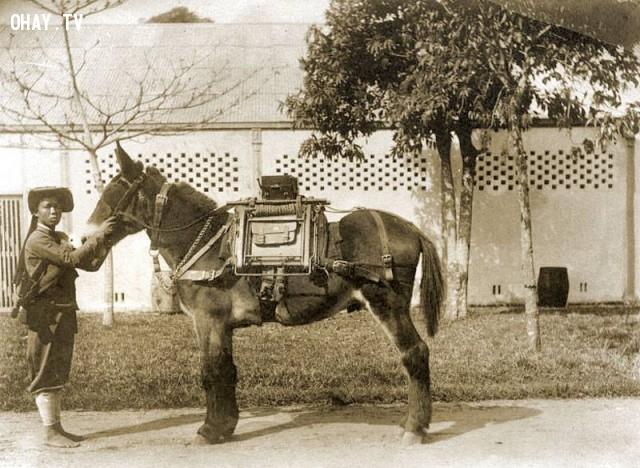 Một lính kỵ binh phụ trách thông tin liên lạc, lính khố đỏ của triều đình,Việt nam xưa,Việt Nam thế kỷ 18,Ảnh cổ Việt Nam