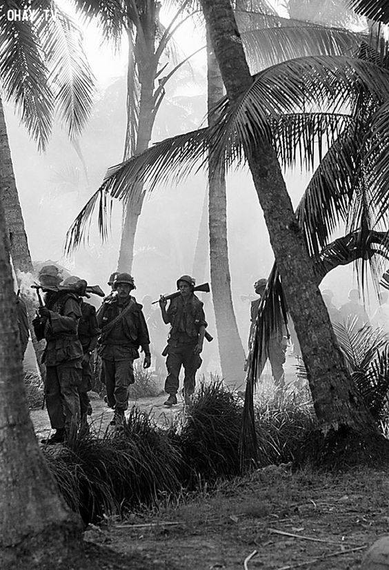 Soldiers moves through the morning mist in the coconut groves of Kien Hoa province, in South Vietnam Mekong Delta, Jan 15 1969