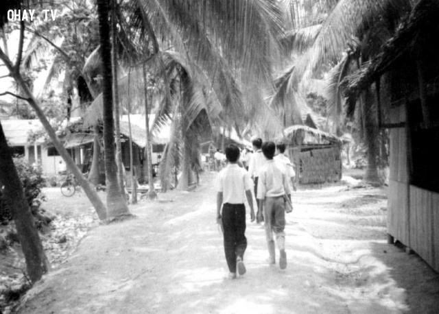 Trường tiểu học Nhơn Thạnh - 1990,Bến Tre xưa,Xứ dừa,hình xưa,ảnh cổ,ảnh lịch sử