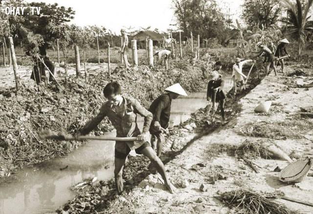 Người Việt đào kênh tưới nước tại tỉnh Kiến Hòa, năm 1961,Bến Tre xưa,Xứ dừa,hình xưa,ảnh cổ,ảnh lịch sử