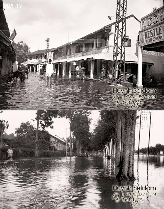 Đường Hùng Vương và 1 góc chợ Bến Tre bị ngập lụt thời Pháp năm 1948,Bến Tre xưa,Xứ dừa,hình xưa,ảnh cổ,ảnh lịch sử