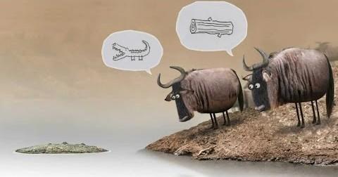 Hãy dừng tranh luận với người ngu, giá trị của bạn cao hơn họ!