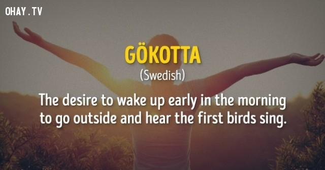 Sự mong mỏi được thức giấc vào buổi sáng sớm để đi ra ngoài và nghe chim hót.,cụm từ,nước ngoài,không dịch được