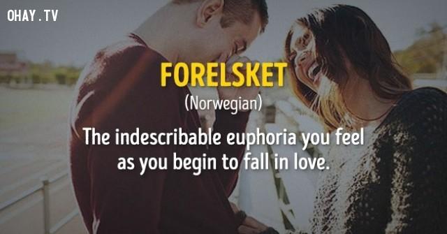 Cảm giác hưng phấn không thể tả chỉ khi bạn cảm thấy mình đang yêu.,cụm từ,nước ngoài,không dịch được