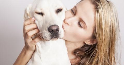 Thói quen của con người khiến những chú chó thấy khó chịu