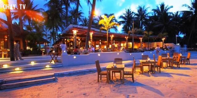 4. Sailing club,du lịch nha trang,bar ở nha trang,vũ trường,quán bar