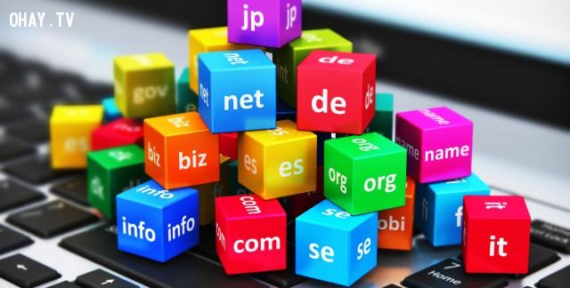 Những đuôi tên miền phổ biến nhất và ý nghĩa của chúng,tên miền,những điều thú vị trong cuộc sống,website