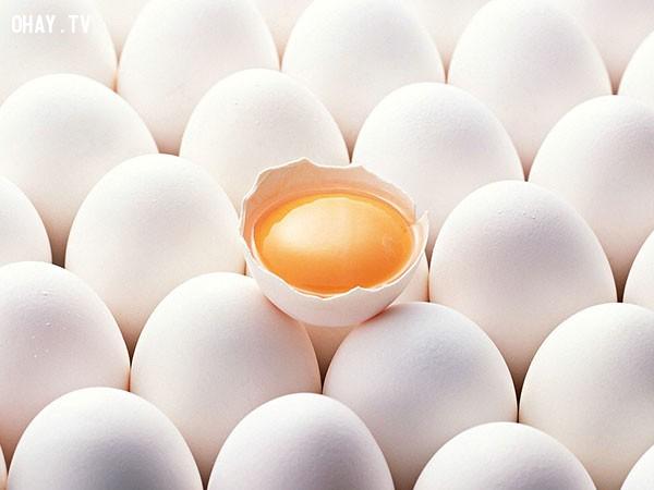 Bí quyết luyện vịt nuôi đẻ hai trứng trong một ngày,vịt đẻ nhiều,nuôi vịt,chăn nuôi gia súc
