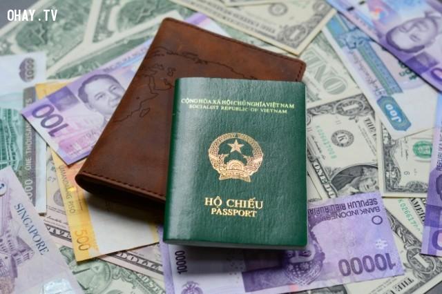 Hộ chiếu màu xanh lá cây đậm,hộ chiếu,passport,màu sắc