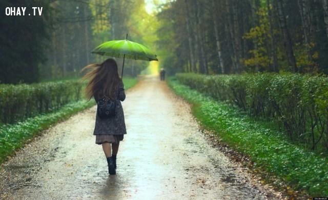 6. Lá rụng - Hoa bay - Tuyết rơi - Nước bắn,mẹo chụp ảnh,chụp ảnh so deep,tư thế chụp ảnh