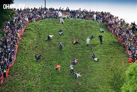 Lễ hội lăn theo pho mát - Anh,lễ hội,phong tục