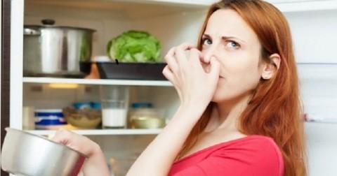 9 cách khử mùi hôi tủ lạnh đơn giản dễ thực hiện