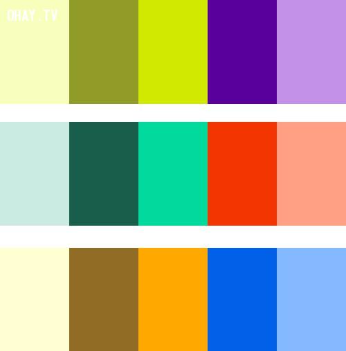 Complementary Colors,màu sắc,cách phối màu,đồ họa,thiết kế,photoshop