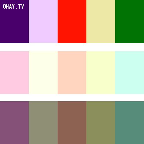 Double Complementary Colors ,màu sắc,cách phối màu,đồ họa,thiết kế,photoshop
