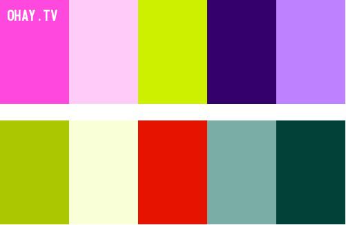 Split Complementary Colors,màu sắc,cách phối màu,đồ họa,thiết kế,photoshop