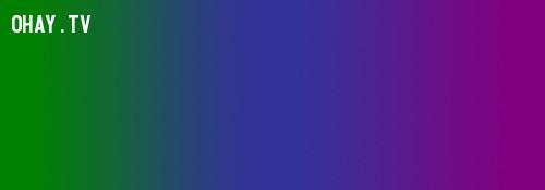 Màu lạnh,màu sắc,cách phối màu,đồ họa,thiết kế,photoshop