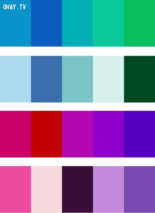 Analogous Colors,màu sắc,cách phối màu,đồ họa,thiết kế,photoshop