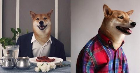 Những chú chó ăn mặc chất nhất hành tinh