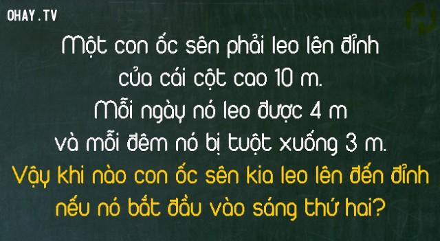 3.,trắc nghiệm vui,câu đố toán học,câu đố logic,câu đố khó,câu đố hay