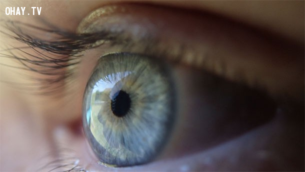 6. Khi gặp gỡ ai đó, hãy cố gắng để ý đến màu mắt của họ trong khi bạn mỉm cười với họ. ,mẹo hay,thủ thuật tâm lý,thủ thuật giao tiếp,tâm lý học,nghệ thuật giao tiếp